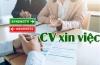 Cách viết ưu nhược điểm của bản thân trong CV xin việc